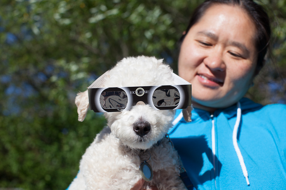 Bailey models eclipse glasses with Yuching